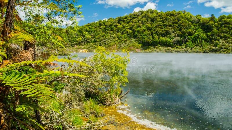 热量土地在罗托路亚 新西兰 库存图片