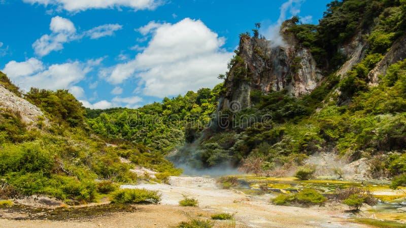 热量土地在罗托路亚 新西兰 免版税库存图片