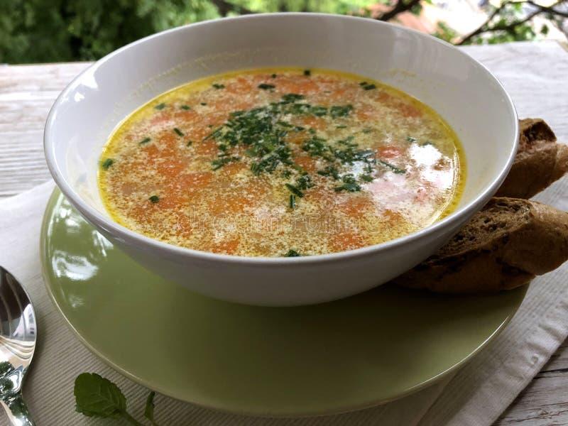 热,匈牙利,自创土豆汤 免版税库存照片