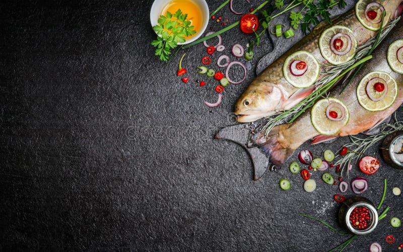 烹调与各种各样的成份的鱼宴的食物背景 与油、草本和香料的未加工的炭灰在切板,顶视图 库存照片
