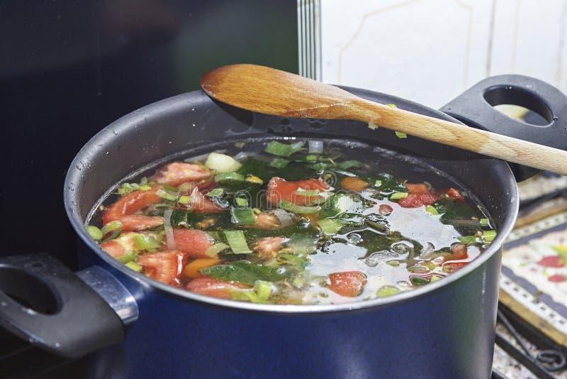 烹调在火炉的一个平底锅的被分类的菜 库存照片