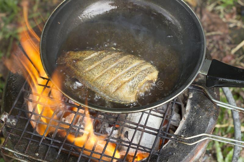 烹调油炸物在野营的鱼在森林里 免版税库存照片