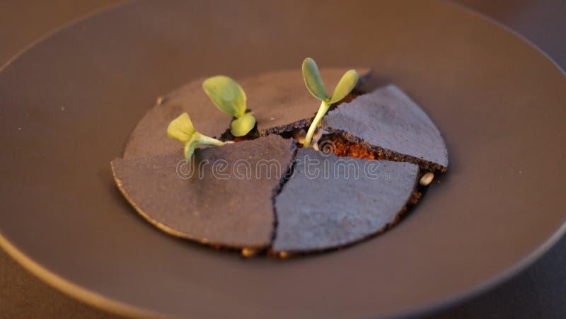 烹调法炸肉排盘食物盛肉盘餐馆样式 图库摄影