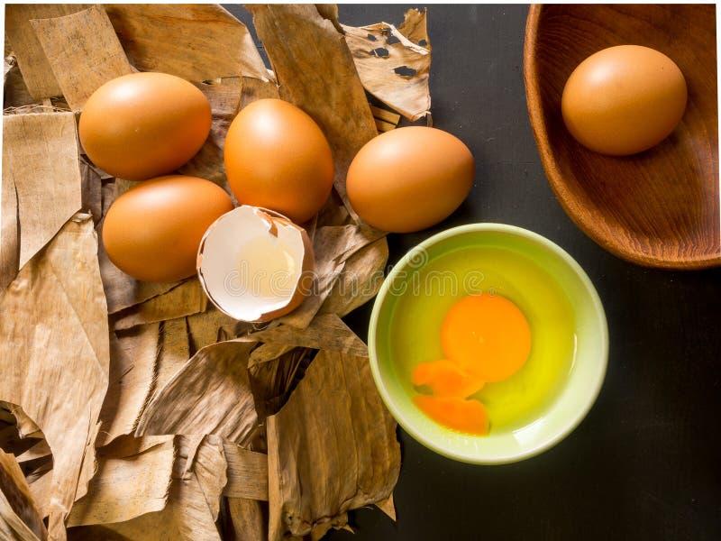 烹调用鸡蛋 免版税库存照片