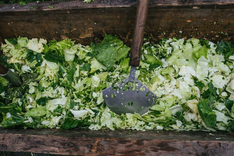 烹调的传统俄国圆白菜汤新鲜的圆白菜 免版税图库摄影