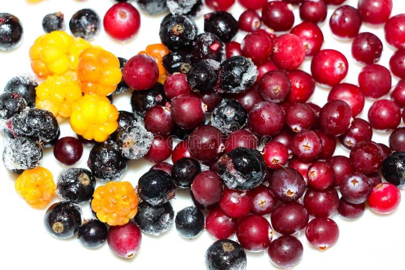 烹调的食物或饮料新近地结冰的莓果 库存图片