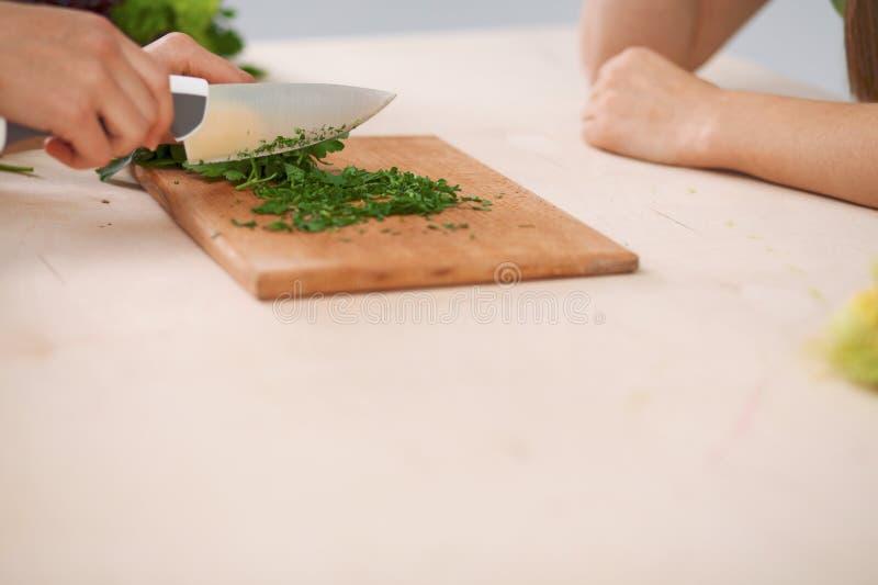 烹调菜沙拉的人的手特写镜头在厨房里 健康膳食和素食主义者概念 免版税库存图片