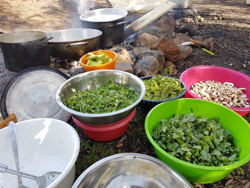 烹调食用植物和菜在肠的领域和投入火 免版税库存照片