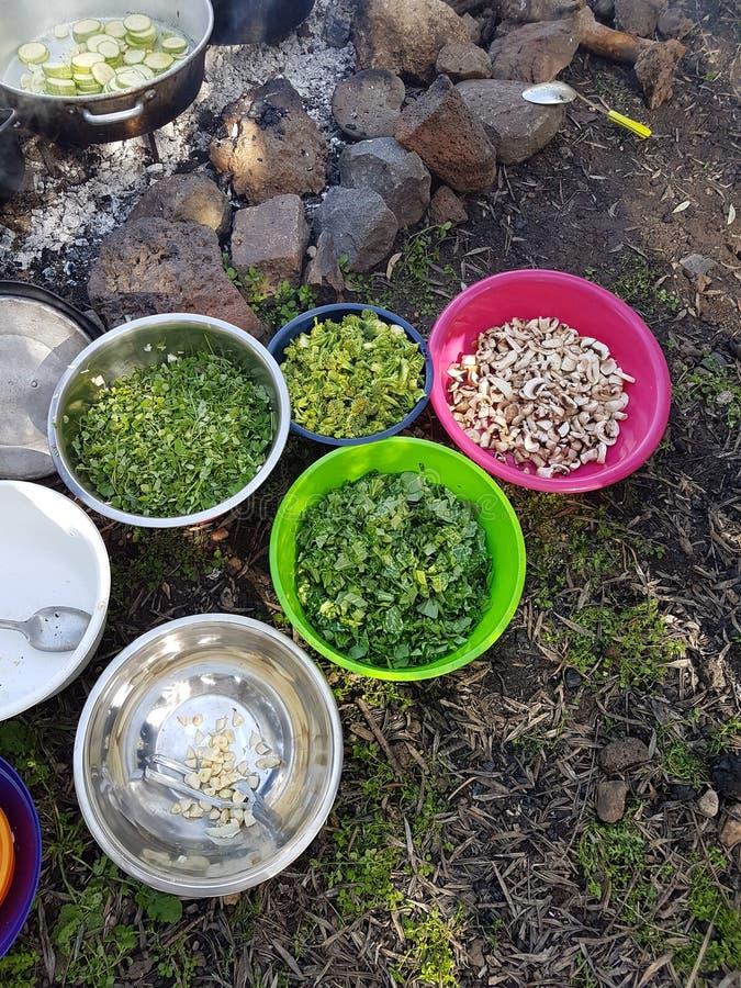 烹调食用植物和菜在肠的领域和投入火 库存照片