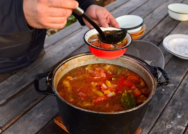 烹调,倒蕃茄和胡椒汤入从大平底深锅的一块红色板材 免版税库存照片
