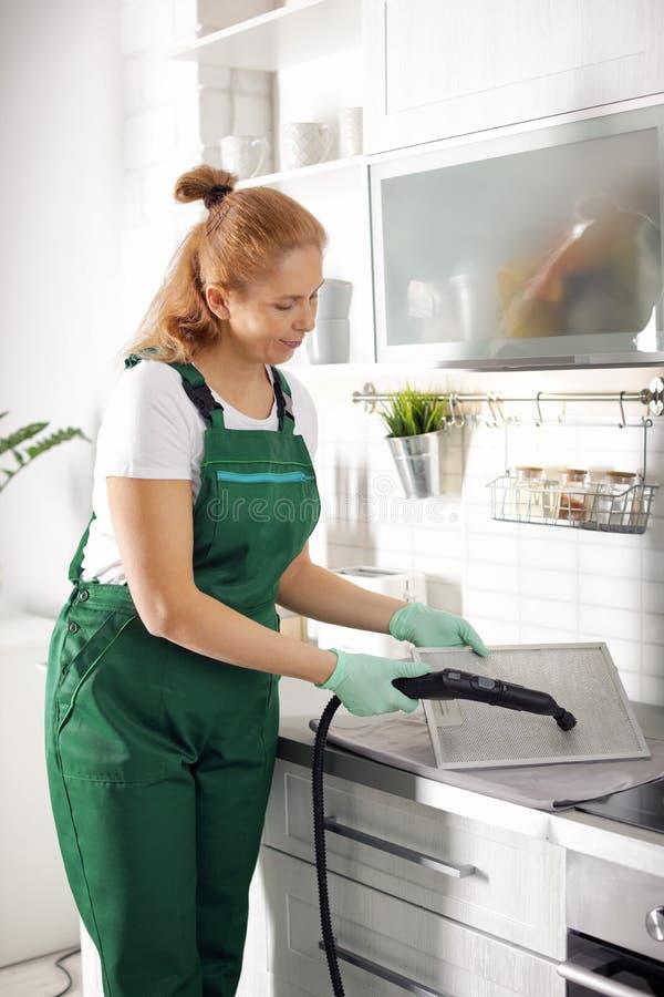 烹饪器材敞篷专业管理员清洁筛网滤波器  库存图片