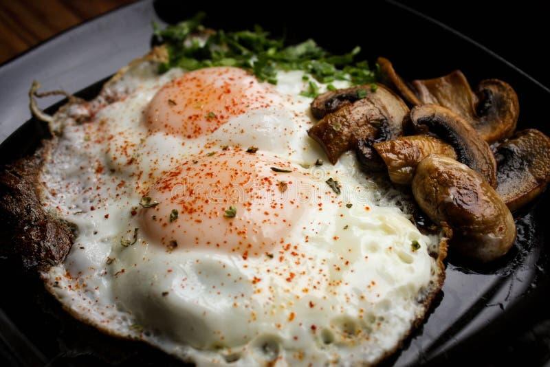 煎蛋用草本和蘑菇 顶视图 库存图片