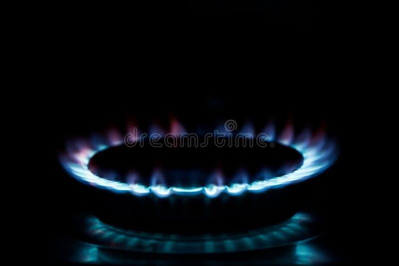 煤气炉的气体火焰 库存图片