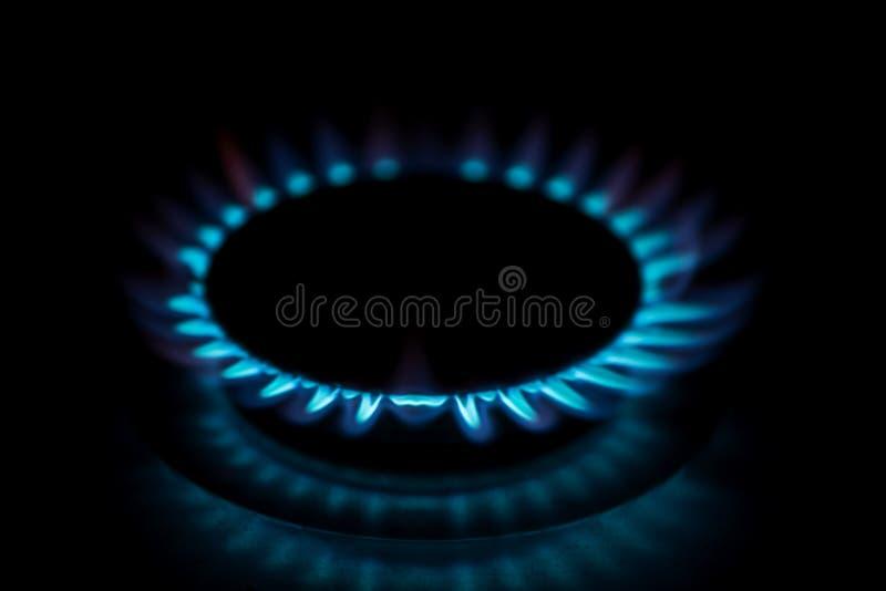 煤气炉的气体火焰 免版税图库摄影