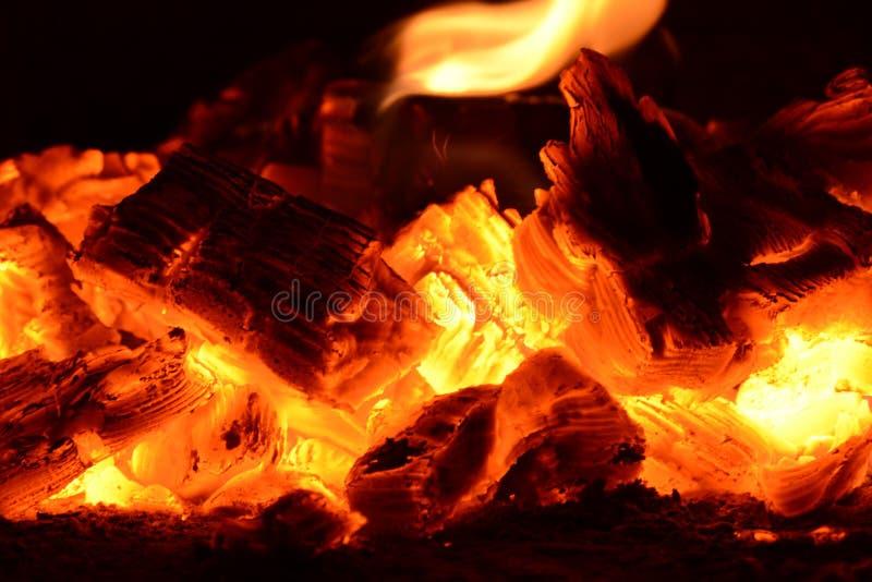 煤灰火火焰木柴 库存照片