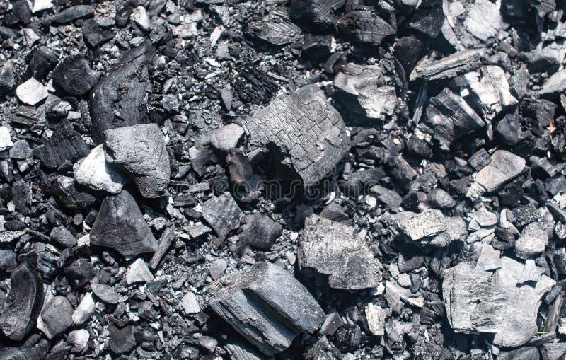 煤炭和灰从火在森林背景中 免版税库存图片