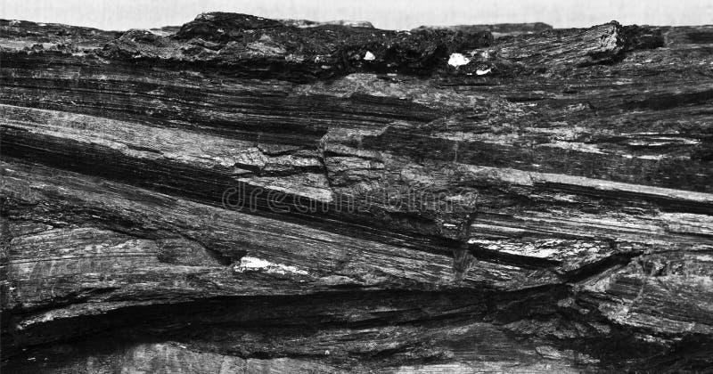 黑煤炭 库存图片