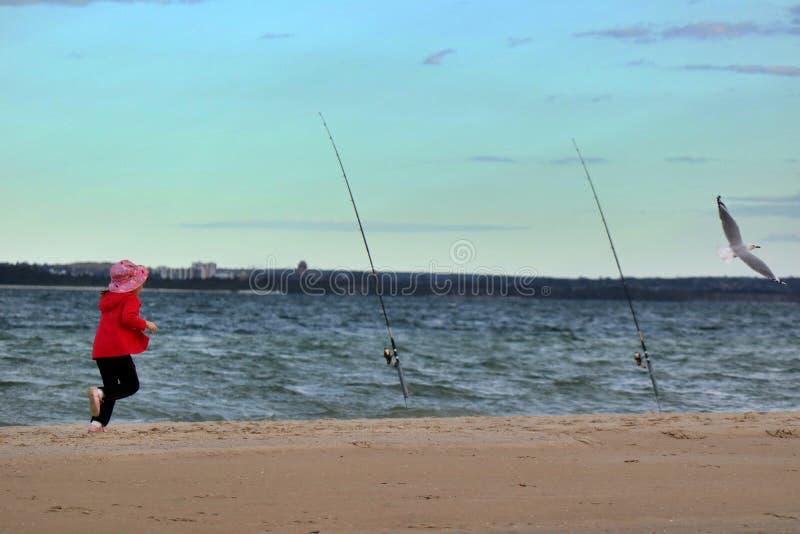 照亮Le Sands红色的女孩追逐海鸥的海滩这 库存照片
