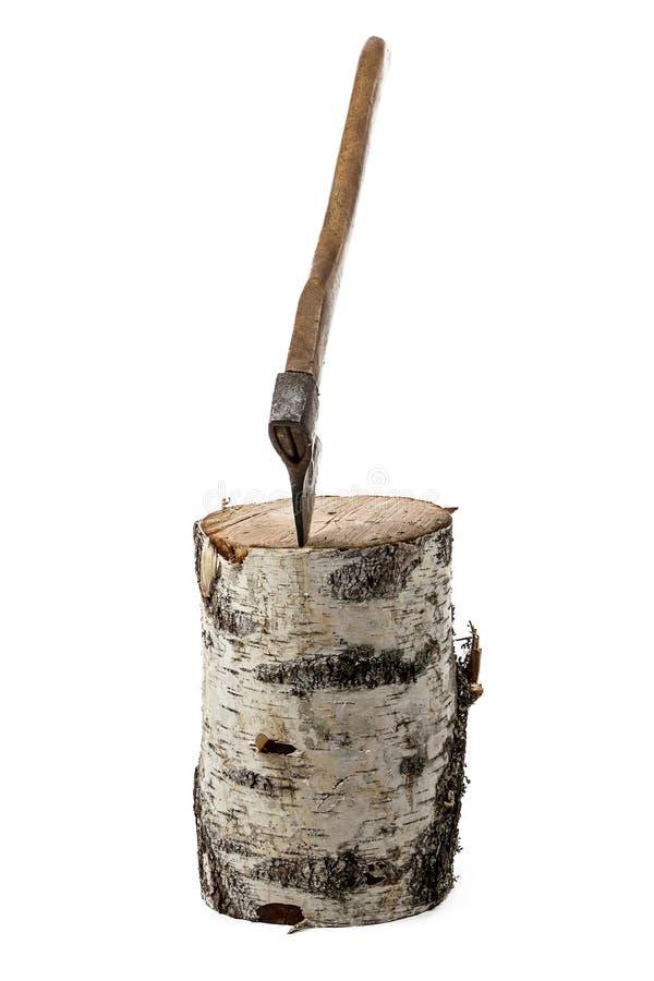 轴照片在桦树树桩的 免版税图库摄影