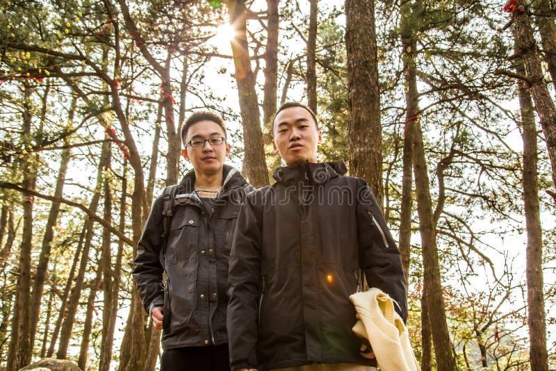 照片在森林里 库存照片