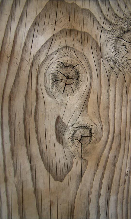 照片实际木头 图库摄影