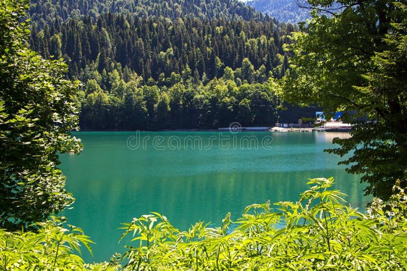 照片山湖通过绿色树 库存照片