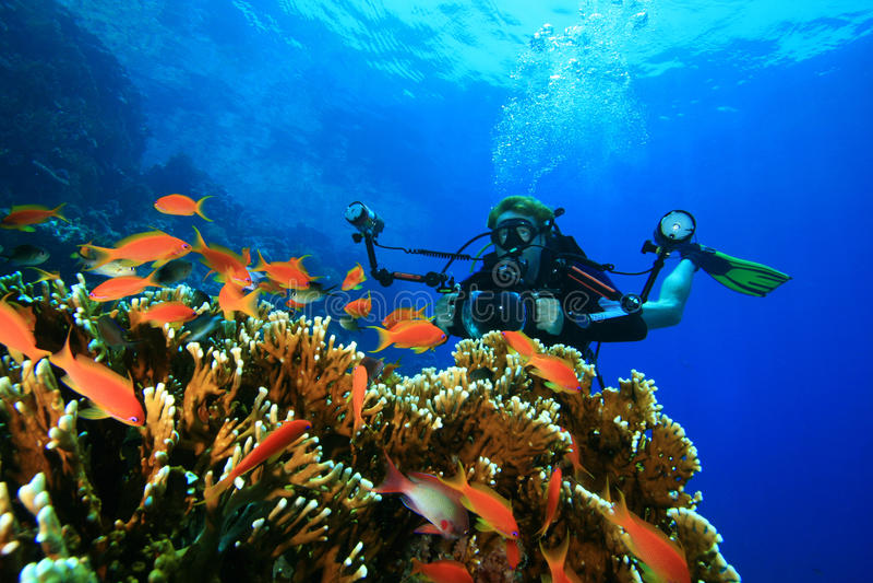 照相机珊瑚潜水员测试他的礁石水肺 免版税库存图片