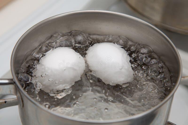 煮沸两个鸡蛋 库存照片