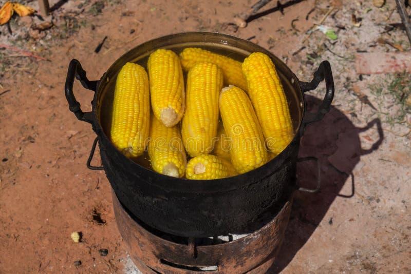 煮沸在罐的玉米 免版税库存图片