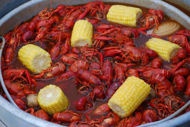 煮沸小龙虾 库存图片