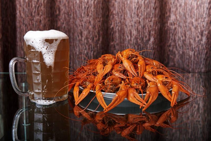 煮沸的小龙虾和杯子用冰镇啤酒 免版税库存照片