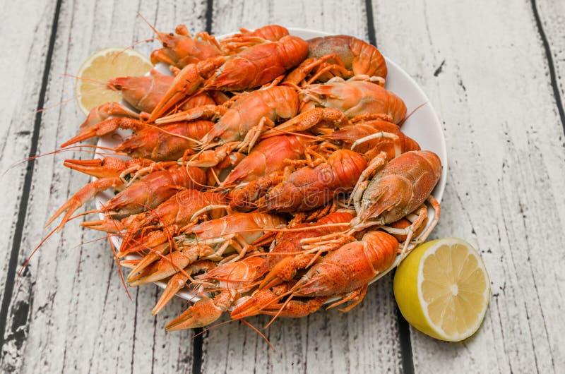 煮沸的小龙虾镀层 免版税库存照片
