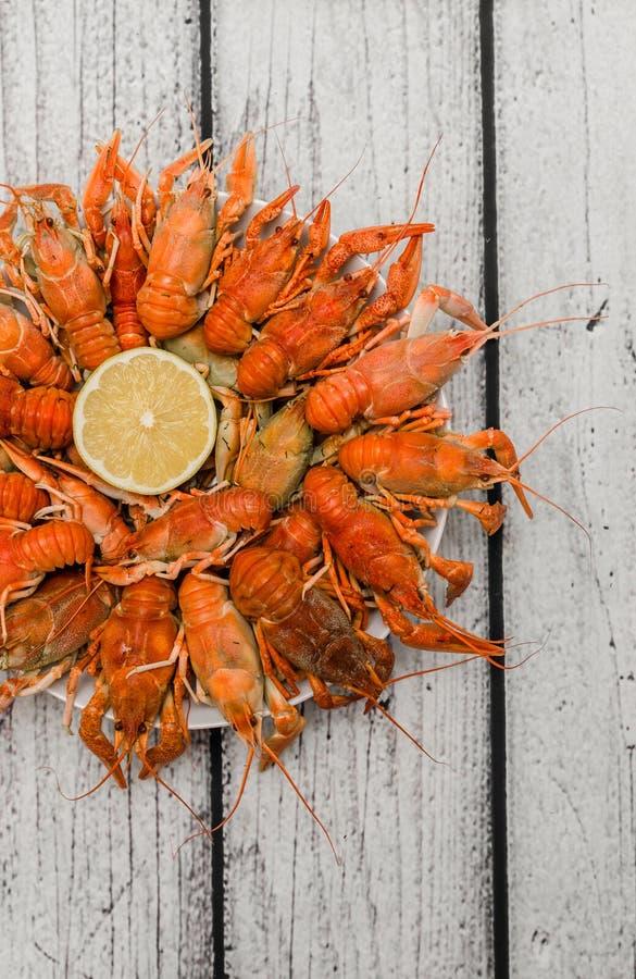 煮沸的小龙虾顶视图 免版税库存照片