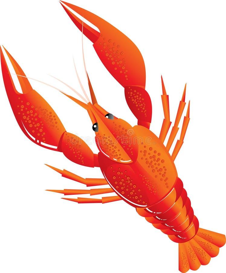 煮沸的小龙虾 向量例证