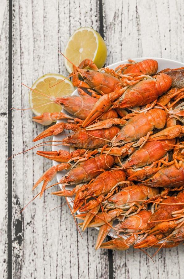 煮沸的小龙虾 免版税库存图片