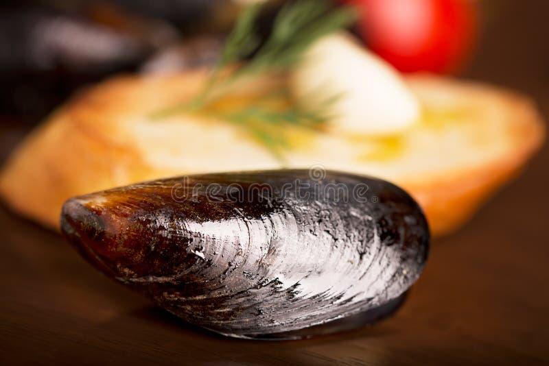 煮沸的淡菜 库存照片