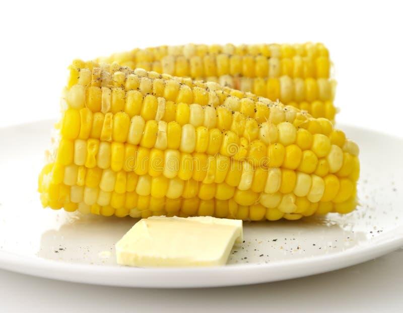 煮沸的玉米甜点 库存照片