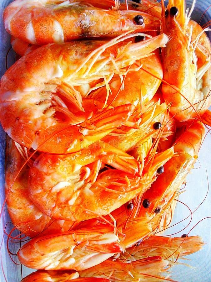 煮沸的虾有橙色颜色 库存照片