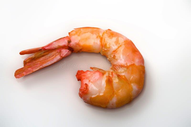 煮沸的虾 库存照片