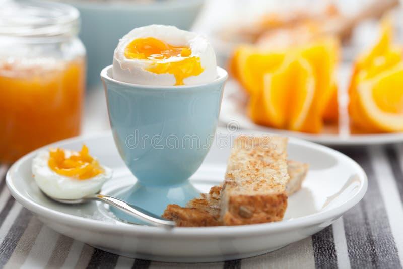 煮沸的鸡蛋早餐 免版税图库摄影
