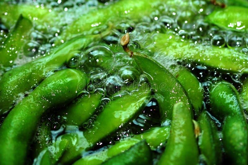 煮沸罐的豆 免版税库存照片