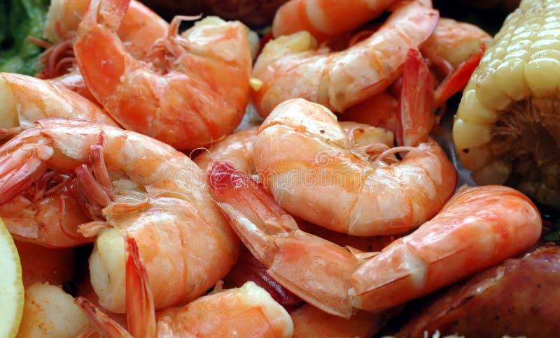 煮沸虾 免版税库存图片