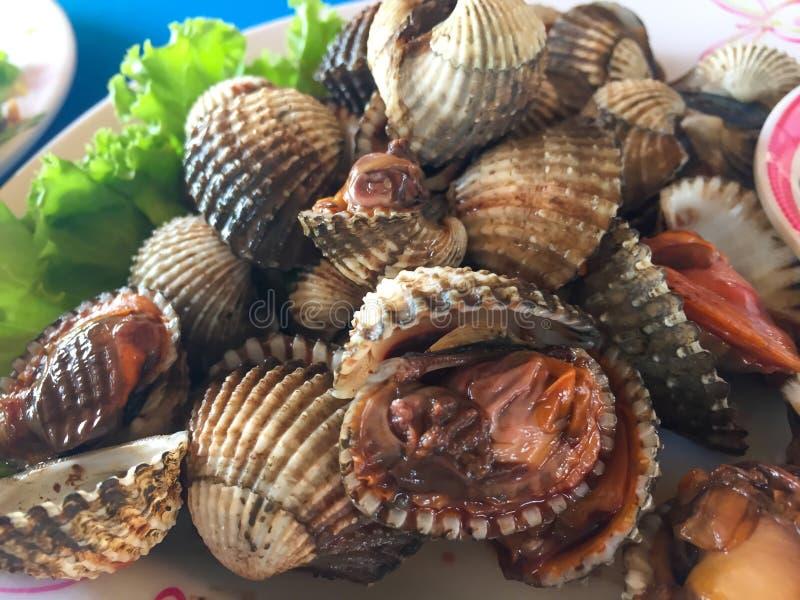 煮熟的新鲜的鸟蛤海鲜用辣调味汁 免版税图库摄影