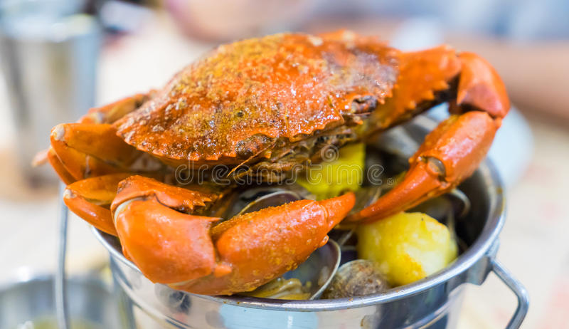 煮熟的煮沸的巨型螃蟹 图库摄影
