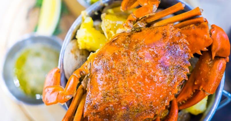 煮熟的煮沸的巨型螃蟹 库存图片