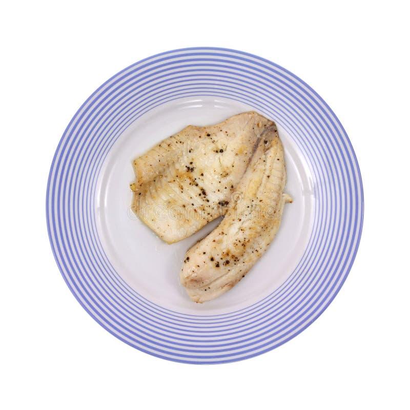 煮熟的牌照罗非鱼 库存图片
