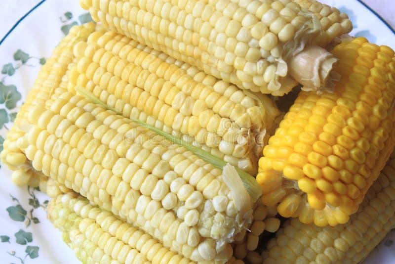 煮熟的玉米 图库摄影