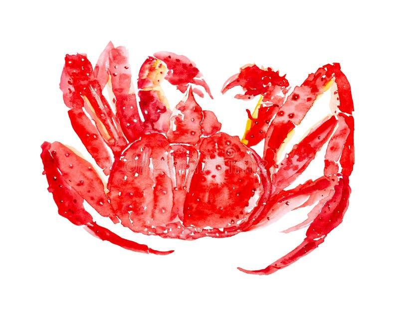 煮熟的红色巨蟹 r 库存照片