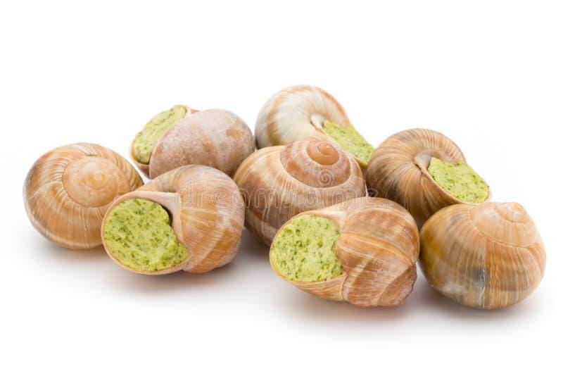 煮熟的蜗牛纤巧 法国烹调被充塞的蜗牛 免版税图库摄影