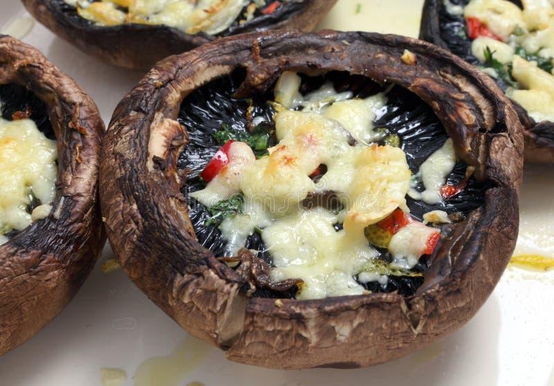 煮熟的酿蘑菇 库存照片